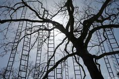Mysteriously Surreal Ladder Tree Installation by François Mechain - My Modern Met