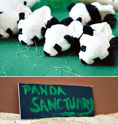 """Have a """"Panda Sanctuary"""" for your outdoor movie night - Southern Outdoor Cinema expert tip for theming and enhancing an outdoor movie event."""