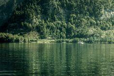 Dunkelgrün – Ohne Himmel oder Horizont zu sehen, verschwimmt das Boot vor dem Grün aus Wasser und Bäumen. 2011, MD   © www.piqt.de   #PIQT
