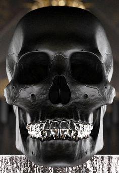 Black skull-love the grille
