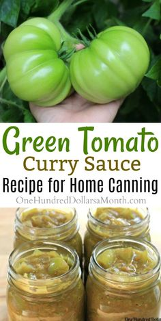 canning recipes - Canning 101 Green Tomato Curry Sauce Green Tomato Relish, Green Tomato Recipes, Tomato Curry, Tomato Chutney, Tomato Canning Recipes, Green Tomato Cake Recipe, Tomato Tomato, Green Chutney, Tomato Sauce