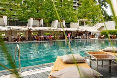 Terrasse à Genève : nos adresses coups de coeur - Eat well Hotel Geneve, Sequoia, Parasols, Le Havre, Coups, Eating Well, Outdoor Decor, Lake Geneva, Patio