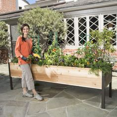 Elevated Raised Garden Beds. I want these for my garden. No more bending over.