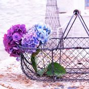 Image of Vintage French Wire Basket