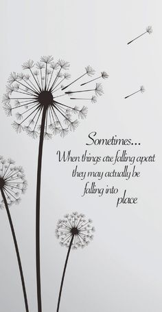 Words Quotes, Me Quotes, Motivational Quotes, Peace Quotes, Sign Quotes, Falling Apart Quotes, Life Falling Apart, Being Apart Quotes, Dandelion Quotes