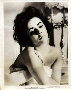 Liz LINER. The incomparable Miss Taylor