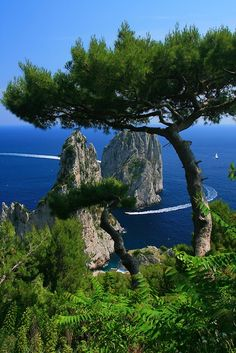 Italy Capri South Bay Twin Rocks