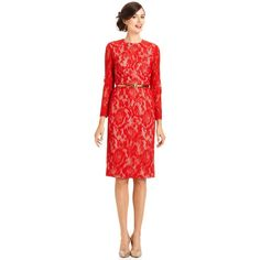 Maggy London Dress, Three-Quarter-Sleeve Belted Lace ($100) ❤ liked on Polyvore