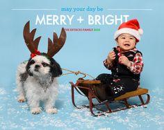 Sled Christmas Infant Dog