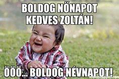 bOLDOG-NNAPOT-KEDVES-ZOLTN--BOLDOG-NVNAPOT--meme-43988.jpg (600×397)