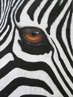 Zebra Original Painting Watercolor African Wildlife Art Black and White Abstract Stripes Animal Painting Gift African Animals, African Art, Zebras, Arte Zebra, Beautiful Creatures, Animals Beautiful, Regard Animal, Animals And Pets, Cute Animals