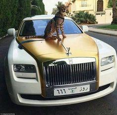 New Luxury Cars Rolls Royce Automobile Ideas Rolls Royce, Rich Kids Of Instagram, Bugatti Chiron, Best Luxury Cars, Expensive Cars, Expensive Taste, Future Car, Fast Cars, Exotic Cars