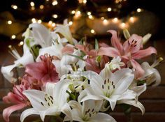 Lovely Lilies In Lights