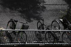 Bicycles molto scuro