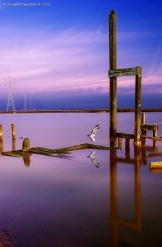 40 Inspiring Examples of Blue Hour Photography « The Photo Argus The Photo Argus