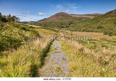 The Southern Uplands Way as it runs through the Galloway Hills in Glentrool, Dumfries and Galloway, Scotland, UK - Stock Image Galloway Scotland, Scotland Uk, Southern, Country Roads, Stock Photos, Mountains, Amazing, Travel, Outdoor