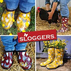 Our newest collection #chicken #sloggers