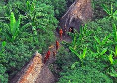 Vale do Javari Reservation, Brazil Specially isolated to protect indigenous tribes Largest Countries, Countries Of The World, North Sentinel Island, Areas Protegidas, Amazon Tribe, Hollow Earth, Iceland Photos, Unusual Facts, Largest Waterfall
