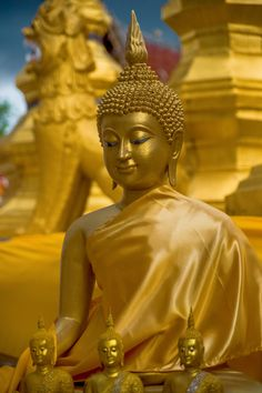 """A este estado tradicionalmente se le denomina """"Iluminación"""" y es la esencia de la enseñanza budista. Todas sus doctrinas y prácticas están hechas para ayudar al ser humano, hombre o mujer, a llegar a su propio potencial de Iluminación."""