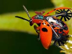Pinterest • The world's catalog of ideas  X Files Robot Insects