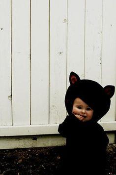 cutie lil cat