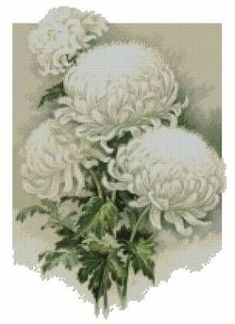 """Вышивка """"Белые хризантемы"""""""