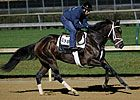 Stay Thirsty got the bob on Breeders' Cup Filly & Mare Sprint (gr. I) winner Groupie Doll in the Cigar Mile (gr. I) at Aqueduct Racetrack Nov. 24