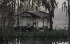 House in Louisiana swamp - Google Image Result for http://www.sounds-like-me.com/blogs/deathvalleygirl/files/2010/04/swamp_house.jpg