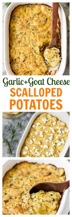 1000+ ideas about Goat Cheese on Pinterest | Cheese, Salad ...
