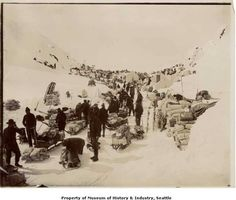 """""""The gold seekers packed their supplies from Sheep Camp to just below Chilkoot Pass. At this point, they assembled their goods, weighed them, and, if they could afford it, arranged to have their supplies carried to the top of the pass by packers or tramway.In this 1898 photo, people wait by their supplies and sleds before starting the steep climb up Chilkoot Pass. The sleds will have to be carried over the pass too."""" -MOHAI Photo: Courtesy Museum Of History And Industry,  Image Number…"""