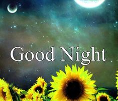 Good Night Images with flowers and nature - PIX Trends Sweet Good Night Images, Sweet Dreams Images, Good Night To You, Photos Of Good Night, Good Night Sweet Dreams, Good Morning Images, Happy Akshaya Tritiya Images, Happy Diwali Images, Happy Karwa Chauth Images