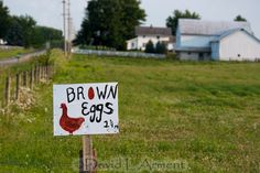 Food in Amish Country - photo by David L'Arment