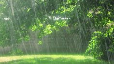 What is it about sunny rainy days...