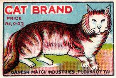 Cat label.