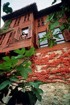 Ara Guler, Turkish architecture