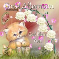 Cute Good Afternoon | Good Afternoon God Bless You Cute Quote Pictures, Photos, and Images ...