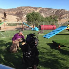@Cesar Millan: Filming today at the Dog Psychology Center with Sonic, who is still avail. for adoption! Please share…