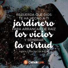 Biblioteca de Catholic-Link - Dios nos ha hecho jardineros, Santa Catalina de...