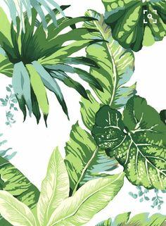 Explore Tropical Palm Leaf Wallpaper on WallpaperSafari Motif Tropical, Tropical Pattern, Tropical Houses, Green Pattern, Tropical Colors, Tropical Prints, Palm Leaf Wallpaper, Blog Wallpaper, Tropical Wallpaper