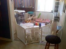 47 Best Puppy Playpens Images Puppy Playpen Playpen Dog Crate