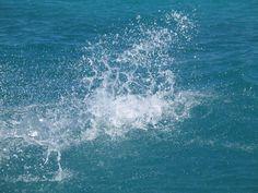 water_splash_by_bipolargenius.jpg (2592×1944)