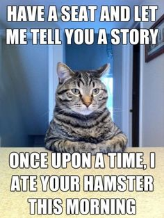 have a seat and let me tell you a story. Once upon a time I ate your hamster this morning.