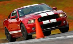 shelby mustang (3)