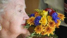 .: Ciência:Teste de olfato ajuda a prever expectativa...