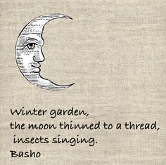 Winter garden, the moon thinned to a thread, insects singing. Basho