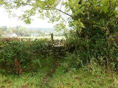 LancashireWalks.com - Sawley Abbey