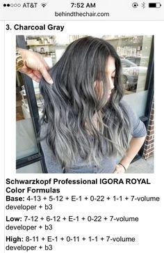 Bescene | Behind the Chair Hair Color For Women, Hair Color And Cut, Charcoal Hair, Aveda Hair Color, Chestnut Hair, Hair Color Formulas, Bright Hair, Dream Hair, Silver Hair