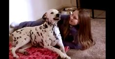 Happy Dog = Happy Human! Check Out This Dog's Smile! | The Animal Rescue Site Blog