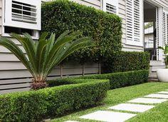 Low maintenance landscape front yard hedges ideas for 2019 Hedges Landscaping, Garden Hedges, Backyard Pool Landscaping, Front Yard Landscaping, Landscaping Ideas, Landscaping Software, Garden Bed, House Landscape, Landscape Design