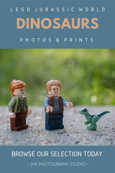 Lego Wall Art, Kids Room Wall Art, Home Decor Wall Art, Nursery Wall Art, Modern Art Prints, Wall Art Prints, Lego Jurassic World Dinosaurs, Claire Dearing, Dinosaur Photo